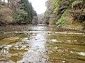 小櫃川 2013-03-24 - panoramio.jpg