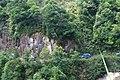 新丰司茅坪林场20150412 - panoramio (19).jpg