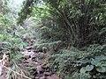 樟平溪 Zhangping Creek - panoramio (1).jpg