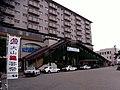 犬山駅 - panoramio.jpg