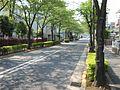 瑞江駅西通り Mizue Station West Street - panoramio (1).jpg