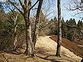 虎塚古墳 2009.03.29 - panoramio (8).jpg