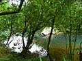 虎豹潭 Hu Bao Tan - panoramio (1).jpg
