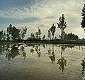 -2012-)Iran Mahmmoud Abad -H.Jafari - panoramio.jpg