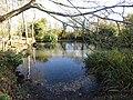 -2018-11-09 The Pond, Pond Lane, Knapton.JPG