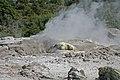 00 1553 Volcanic steam funnel in the Whakarewarewa.jpg