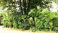 100 Jahre Hofgarten Innsbruck 30.jpg
