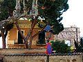 117 Ca l'Arenas, c. Riera Fosca 1-3 (Alella), façana lateral.jpg