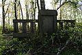 1377viki Cmentarz żydowski przy ul. Lotniczej. Foto Barbara Maliszewska.jpg