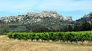 Provence wine - Les Baux-de-Provence with vineyards