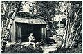 19608-Berggießhübel-1915-Schutzhütte auf dem Hochstein-Brück & Sohn Kunstverlag.jpg