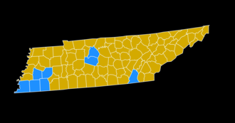 Tennessee Democratic primary, 2008 - Image: 2008Tennessee Democratic Primary