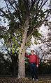 20111209-NRCS-LSC-0333 - Flickr - USDAgov.jpg