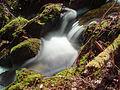 2013-04-01 14-33-55-cascade.jpg