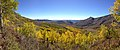 2014-10-04 13 52 08 Panorama of Aspens during autumn leaf coloration from Charleston-Jarbidge Road (Elko County Route 748) in Copper Basin about 10.3 miles north of Charleston, Nevada.jpg