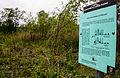 2015 05 24 Deutschland Baden-Württemberg Landkreis Sigmaringen Naturschutzgebiet Zielfinger Vogelsee (5).jpg