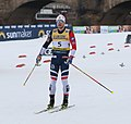 2019-01-12 Men's Final at the at FIS Cross-Country World Cup Dresden by Sandro Halank–029.jpg