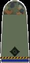 215-Leutnant-dR.png