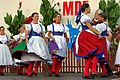 27.8.16 Strakonice MDF Sunday Final Concert Letni Kino 171 (29206427502).jpg