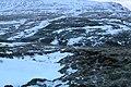 460, Iceland - panoramio (15).jpg