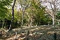 4 Chome-12 Masugata, Tama-ku, Kawasaki-shi, Kanagawa-ken 214-0032, Japan - panoramio (4).jpg
