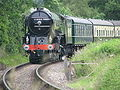 60163 Tornado on the West Somerset Railway at Nornvis Bridge near Lydeard St Lawrence 13 June 2009 pic 2.jpg