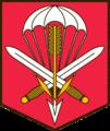 601 skupina speciálních sil.png