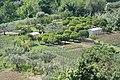 66054 Vasto, Province of Chieti, Italy - panoramio - trolvag.jpg