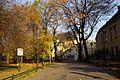 7001vik Planty krakowskie. Foto Barbara Maliszewska.jpg