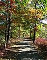 80 acres park Eatontown, NJ - panoramio.jpg