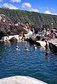 Açores 2010-07-18 (5042345000).jpg