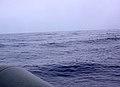 Açores 2010-07-21 (5118423826).jpg