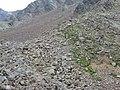 AG. 09 LANA DI DENTRO-VERSO IL RIFUGIO CANZIANI- V. D'ULTIMO- PER GHIAIONI - panoramio.jpg