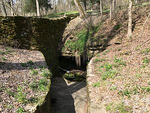 Abraham Lincoln Birthplace National Historical Park - The spring the farm was named after.