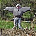 A Lady Scarecrow (5617782098).jpg