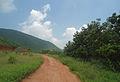 A Rural dirt road at Bakkannapalem 03.JPG
