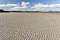 A Visit To Sandymount Strand (6051255106).jpg