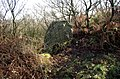 A boundary stone perhaps^ - geograph.org.uk - 2160457.jpg