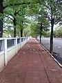 A footpath on Walker's Road - panoramio.jpg