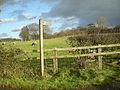 A local footpath - geograph.org.uk - 1074440.jpg