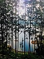 A section of the Maskeliya Reservoir as seen from the Peak Wilderness Sanctuary of Sri Pada, Sri Lanka.jpg