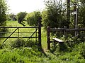 A stile on the Essex Way Footpath - geograph.org.uk - 1266424.jpg