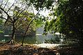 Acharya Jagadish Chandra Bose Indian Botanic Garden - Howrah 2011-01-08 9849.JPG