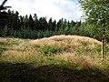 Afd- 217 2012-09-05 11-31-20.jpg