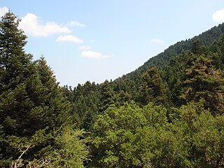 File:Ainos National Park, Kefallonia, Greece (4).jpg ...