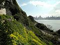 Alcatraz - West Side (4409210473).jpg