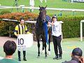 All Blush (horse) IMG 8227-1 20161016.jpg