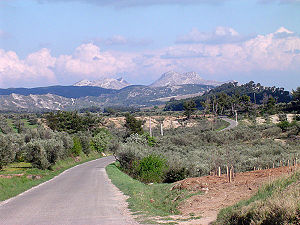Alpilles - Alpilles landscape near Le Destet. The three types of landscape forms can clearly be seen: cultivated land on the lower slopes, trees on the foothills and bare rock on the peaks.