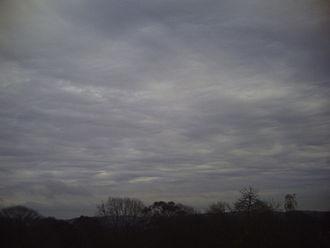 Altostratus cloud - Altostratus undulatus