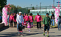 American Cancer Society's Stride for Life 5K 131020-A-UW671-037.jpg